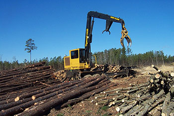 Log equipment in the forest